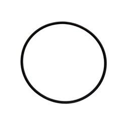 Pierścień uszczelniający O-ring 172.00x6.00