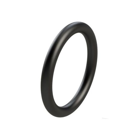 Pierścień oring, 123 x 6,50 mm